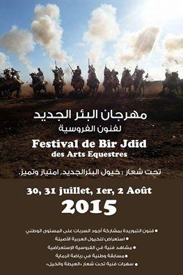 """النسخة الثانية من مهرجان البئر الجديد تحت شعار""""خيول البيرالجديد امتياز و تميز"""""""