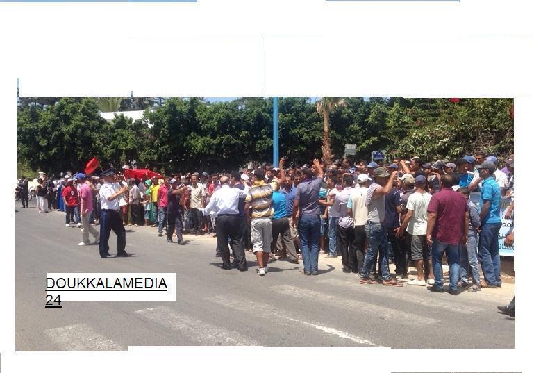 وقفة احتجاجية صباح اليوم الاثنين أمام عمالة الجديدة لمحترفي جني الطحالب