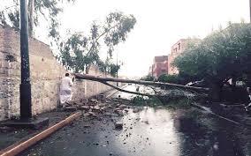 احذروا الأمطار العاصفية بهذه المدن وفق مديرية الأرصاد الجوية الوطنية