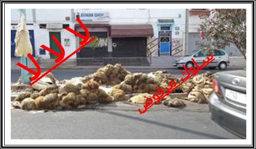 """نظافة الأحياء و الشوارع يوم عيد الأضحى سلوك أم عادات تساهم فيها شركة النظافة """"دوريشبورغ"""" ؟"""