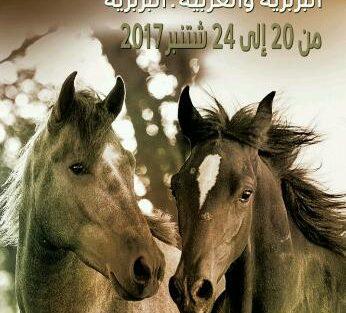 الشركة الملكية لتشجيع الفرس تطلق الدورة الأولى للملتقى الوطني للخيول البربرية والعربية البربرية و تكرم الحصان البربري والعربي البربري