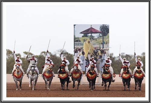 معرض الفرس:ولي العهد الأمير مولاي الحسن يعطي انطلاقة الدورة العاشرة