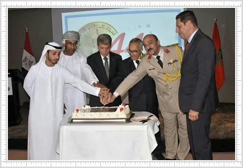ملحق الدفاع المصري: انتصارات أكتوبر حررت الأرض وفرضت سلام الأقوياء