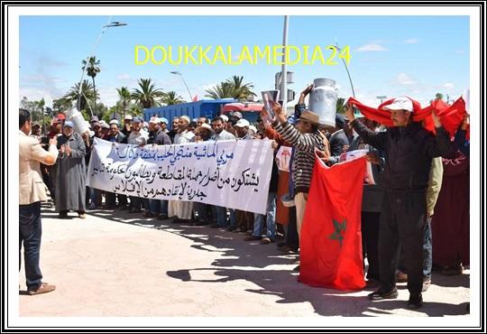 سيدي بنور:المقاطعة تجبر تعاونيات تسويق الحليب للإحتجاج أمام العمالة