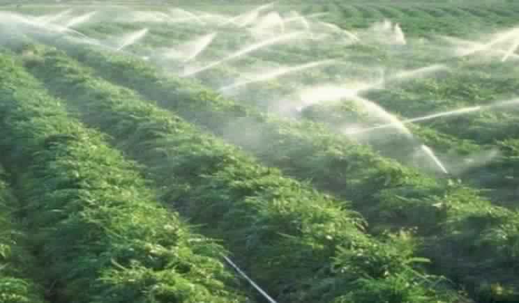 فلاحو منطقة اللوكوس يرحبون بقرار أخنوش بالإعفاء من وجبية مياه الري