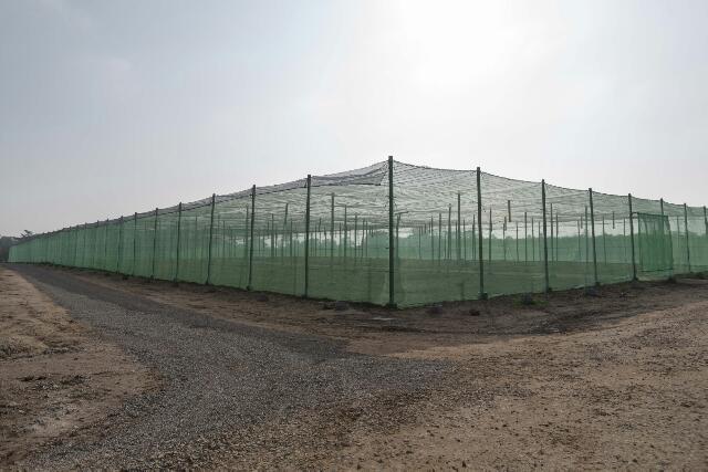 ملــــف إخــــبــــاري القطب الحضري لمازاغان يضع المناطق الخضراء في صلب برامج التطوير و الإعمار