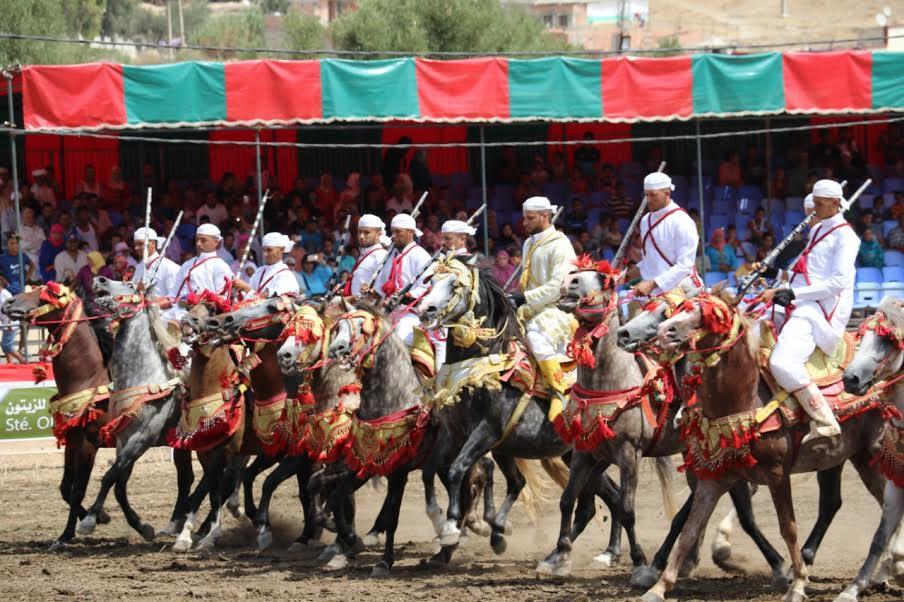 مهرجان السنوسية في نسخته السادسة.. خيل وبارود تجاوز صيته الحدود